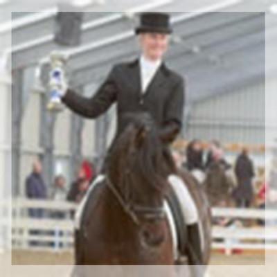 Final européenne jeune chevaux MCI, St-George, «Belgique»